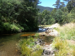 Ovens River the finish linee
