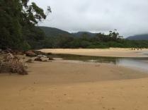 Sealers Creek low tide