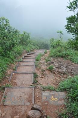 Stairs and bike path ???